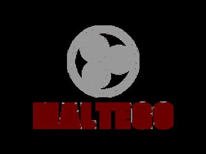 Maltego Disinformation Campaigns